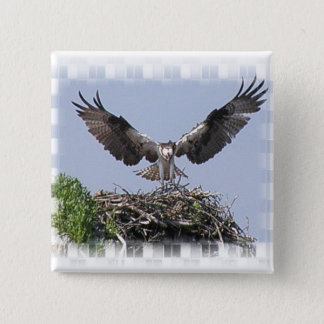 Osprey Nest Pin