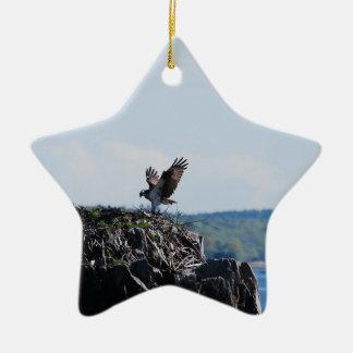 Osprey on Nest Ceramic Star Ornament