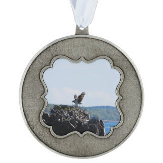 Osprey on Nest Scalloped Pewter Ornament