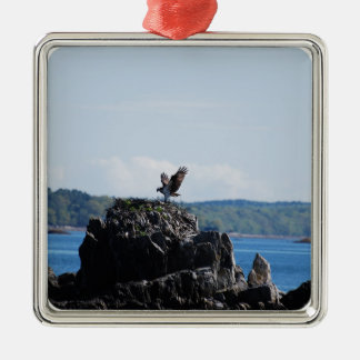 Osprey on Nest Silver-Colored Square Ornament