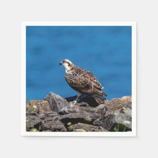 Osprey on the rocks paper napkins