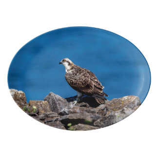Osprey on the rocks porcelain serving platter
