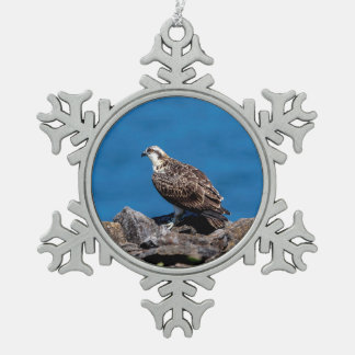 Osprey on the rocks snowflake pewter christmas ornament