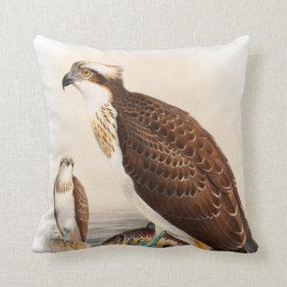 Osprey Sea Hawk John Gould Birds of Great Britain Throw Pillow