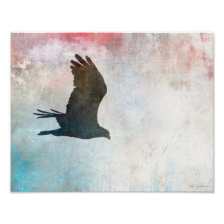Osprey Silhouette 14x11 Archival Matte Poster