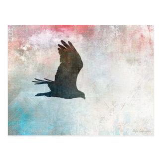 Osprey Silhouette Postcard