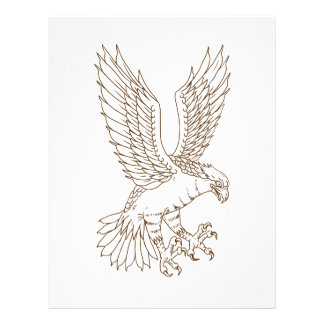 Osprey Swooping Drawing Letterhead