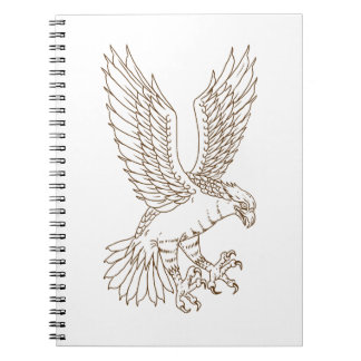 Osprey Swooping Drawing Notebooks
