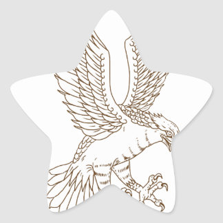 Osprey Swooping Drawing Star Sticker