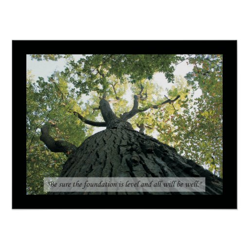 Osteopathic Quotes and Sayings Health Poster