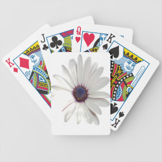 Osteospermum Daisy with Purple Centre Bicycle Playing Cards