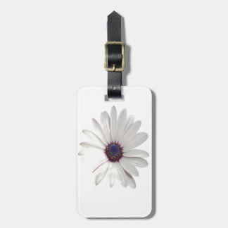 Osteospermum Daisy with Purple Centre Luggage Tag