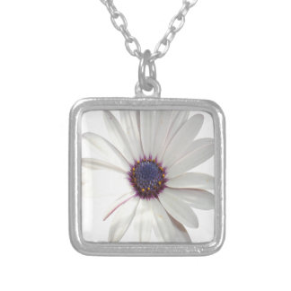 Osteospermum Daisy with Purple Centre Silver Plated Necklace