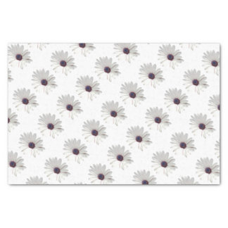 Osteospermum Daisy with Purple Centre Tissue Paper