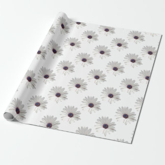 Osteospermum Daisy with Purple Centre Wrapping Paper