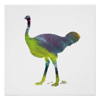 Ostrich art perfect poster