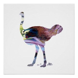 Ostrich art poster