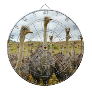 Ostrich Bird Dart Board