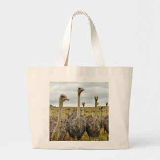 Ostrich Bird Large Tote Bag
