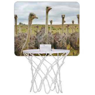 Ostrich Bird Mini Basketball Hoop