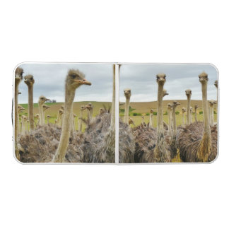 Ostrich Bird Pong Table
