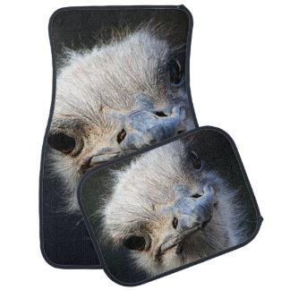 Ostrich Car Mat
