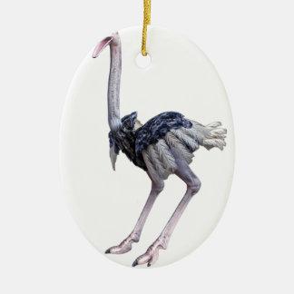 Ostrich Ceramic Ornament