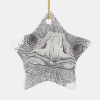 Ostrich Face Ceramic Star Ornament