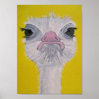 Ostrich Face Poster
