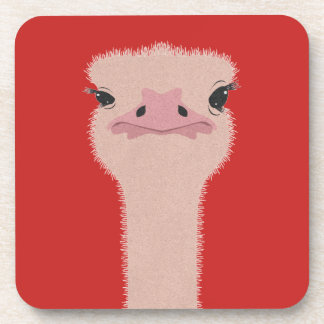 Ostrich funny face coaster