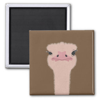 Ostrich funny face magnet