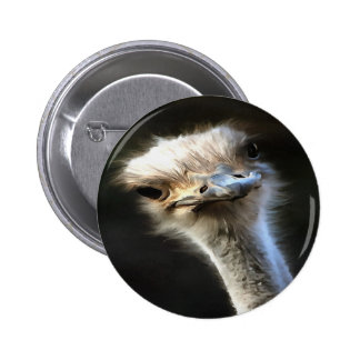 Ostrich Head 2 Inch Round Button