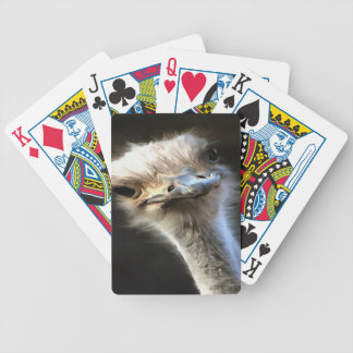 Ostrich Head Bicycle Playing Cards