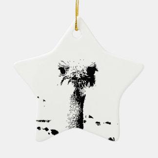 Ostrich Head in Pen and Ink Ceramic Ornament