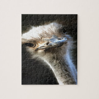 Ostrich Head Puzzle