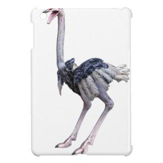 Ostrich iPad Mini Cover