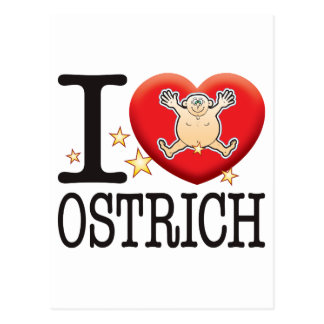 Ostrich Love Man Postcard