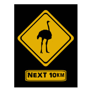 ostrich road sign postcard