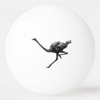 Ostrich Running Sketch Ping Pong Ball