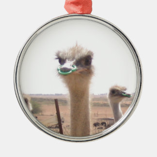 Ostrich Silver-Colored Round Ornament