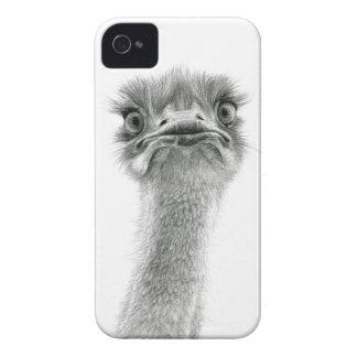 Ostrich SK053 Case-Mate iPhone 4 Case