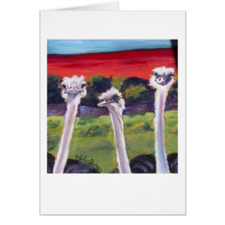 "Ostriches Greeting Card, Reads ""Just Thinkin of Ya Card"