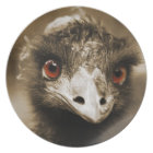 Ostriches Look plate