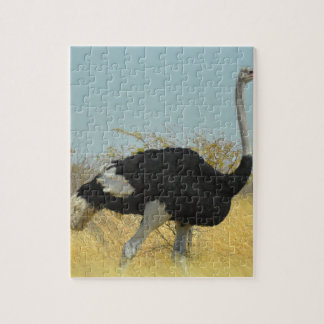 Ostrige out for a run jigsaw puzzle