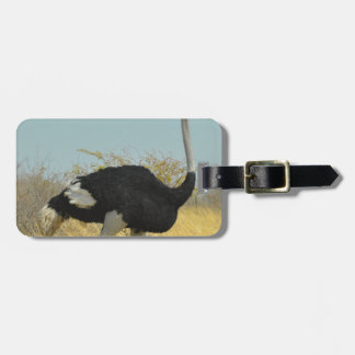 Ostrige out for a run luggage tag