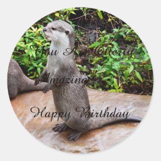 Otter Amazing Happy Birthday, Round Stickers. Classic Round Sticker