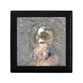 Otter Back Float Jewelry Box
