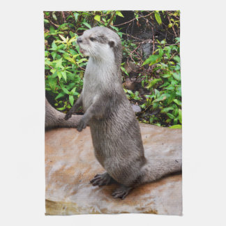 Otter Be Talking To Me, Kitchen Towel