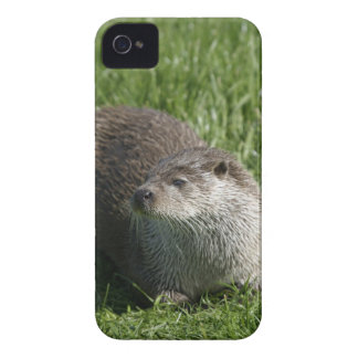 Otter Case-Mate ID iPhone 4/4S Case