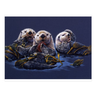 Otter Family Delight Postcard